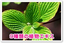 9種類の植物エキス